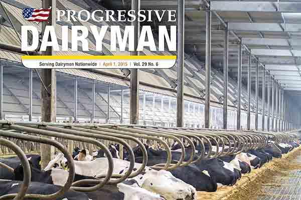 Progressive Dairyman