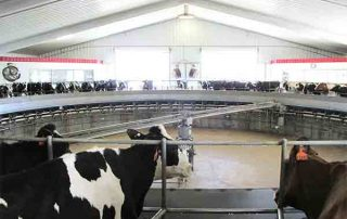 Designing Milking Centers for over 25 years