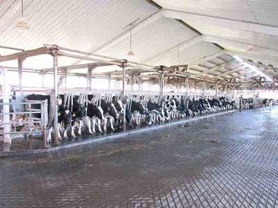 Milking Centers